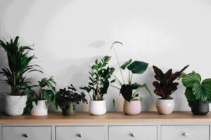 Smart Ways to Improve Home Indoor Air Quality