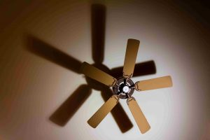 What Color Ceiling Fan Should You Buy